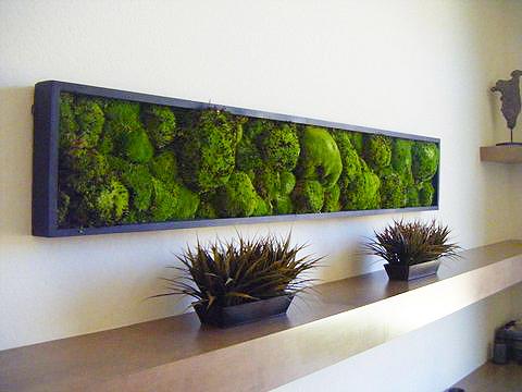 MossWallArt - Best Living Artwork for Home - Best ...