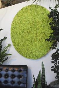 Interior Moss Art