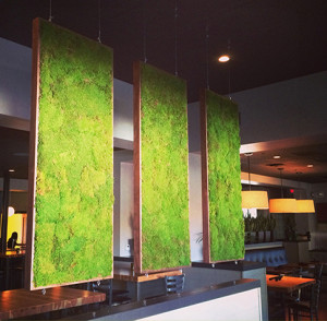 Artisan Moss Artwork